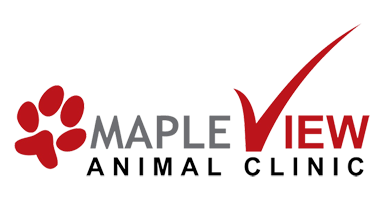 Mapleview Animal Clinic | Barrie, ON
